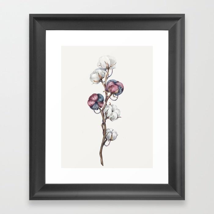 cotton67360-framed-prints